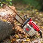 Couper un arbre - Émondage SBP